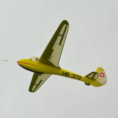 a7825.jpg